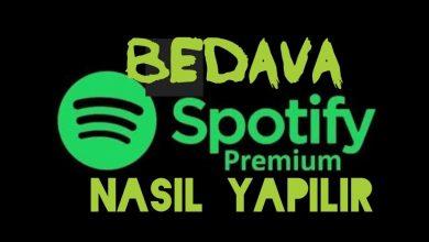 Bedava Spotify Premium Hesapları