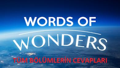 Photo of Words Of Wonders Cevapları 2020 Nedir?